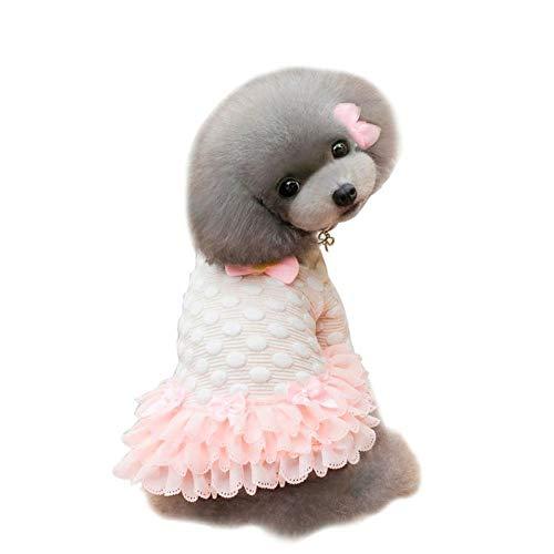 ZHONGCHENYI Pet Supplies Süße Sweety Dog Winter Kleid Warme Hundekleidung Pudel Teddy Dog Puppy Pet Kleid Kleidung Bekleidung Kostüm S-XXL Für Kleine Hunde, XXL