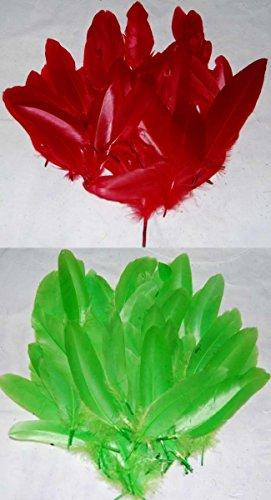 Federkiel Craft Federn–Rot und Grün–je 1Stück–Christmas Mix–Durchschnittliche 100Stück Federn für Sammelalben und zum - Crafts Halloween Brownie