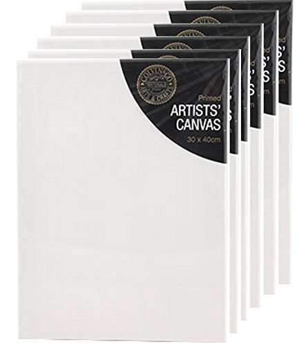 Artists Blank Canvas 's PRIMED 30 x 40 x 1.7cm (16 x 12) by Colvin & Co