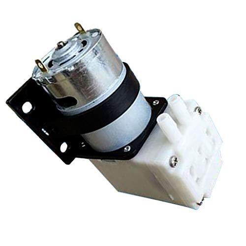 bstansaugende Wasserpumpe Förderpumpe Vakuumpumpe, 1.2L/min, Hohe Temperaturbeständigkeit, Geräuscharm ()