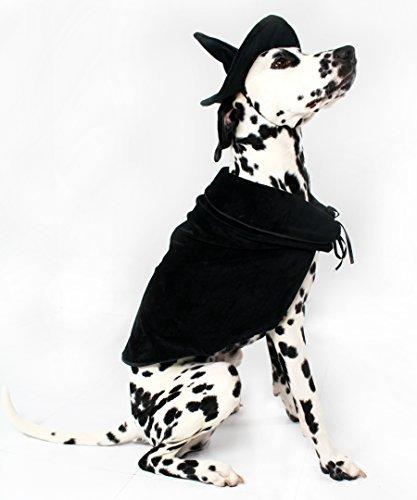 Midlee Halloween Hexe Umhang und Hat Hund Kostüm, XXX-Large Xxx Large Kostüm