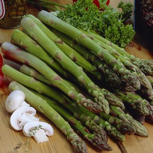 seekay-asparagus-connovers-colossal-appx-200-seeds