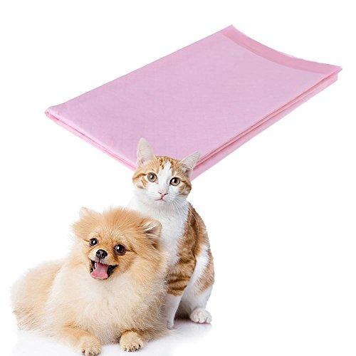 10 Stücke Haustiere Saugfähigen Windel Pads Hündchen Katze Toilette Urin Windel Nappy (Windel Hündchen)