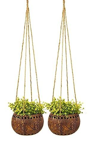 exotique Elegance Lot de 2Décoration de jardin 41/5,1cm Coquille de noix de coco à suspendre Pot de fleurs Pot de fleurs (Taille M).