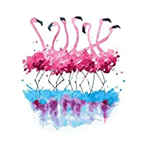 Artshdow Diy Paint By Number Kit Paint On Canvas Flamingo Dancing Arylic Painting 16X20
