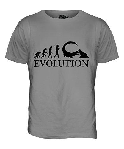 CandyMix Reptilien Pfleger Evolution Des Menschen Herren T Shirt Hellgrau