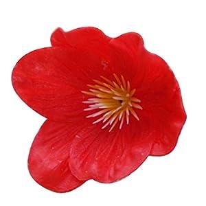 DianxinNY Good Home Life 5 Piezas de Flores Artificiales de Amapola Falsas para decoración del hogar, Cocina, Sala de…