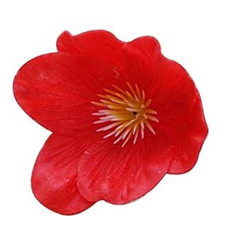 DianxinNY Good Home Life 5 Piezas de Flores Artificiales de Amapola Falsas para decoración del hogar, Cocina, Sala de Estar, Boda, Fiesta