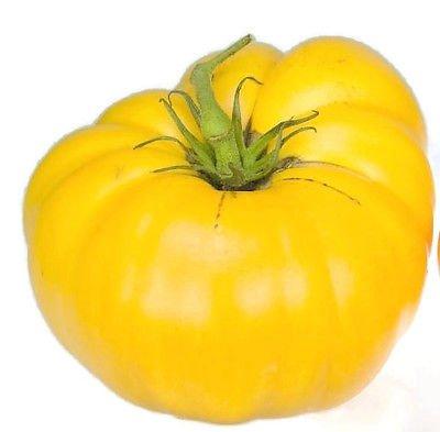 50ct von Tomatensamen, Gelb Brandywine, gelbe Tomaten, Fleisch Nicht-GVO-Tomaten
