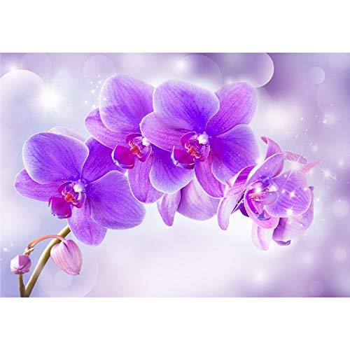 *decomonkey Fototapete Orchidee Blumen 300×210 cm Tapete Wandbild XXL Riesen Wandbild Bild Fototapeten Tapeten Wandtapete 3D Effekt Modern Violett Rosa*