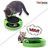 Best Cats Toys - See Inside || Cat Kitten Catch The Mouse Review