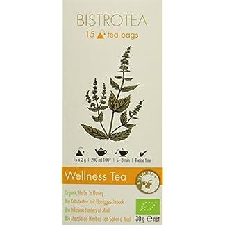 Bistrotea-Bio-Wellness-Tea-Krutertee-2er-Pack-2-x-30-g