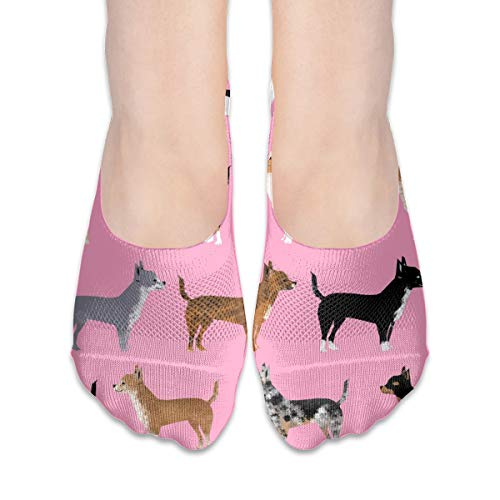 ogs Pet Dog Cute Pink Dogs Dog Coats and Colors Merle Piebald Black and Tan Irish Marked Chihuahuas Cotton Low Cut Socks Non-Slip Grips Casual for Men and Women ()