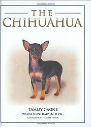 The Chihuahua Terra Nova