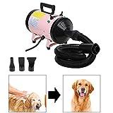 ZanGe 2400W Speed Dog Hair Dryer Dog Cat Pet Grooming Hair Dryer Hairdryer