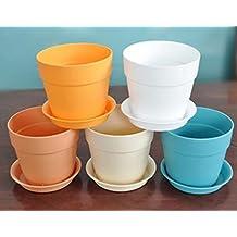 MINGZE 5 piezas de mini plantas de plástico de resina colorida macetas con platillos, planta