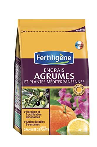 Fertiligene 8128  Engrais Agrumes et Plantes Méditerranéennes 800 g