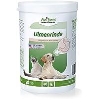 AniForte Amerikanische Ulmenrinde Pulver 250 g Slippery ELM Bark Pulver - Naturprodukt für Hunde und Katzen …