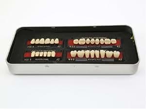1 nouvelle boîte dents fausses artificielles M32 taille A2 couleur 28-pcs