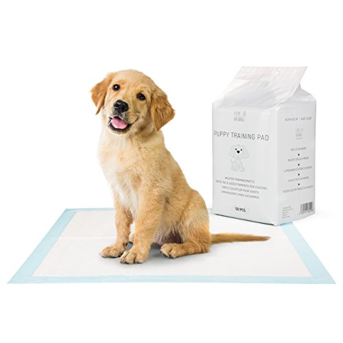 Everanimals Puppy Training Pads | 60x60cm | Dog Toilet Training Pad | Extra Strong, Odorless & Absorbent | Leakage Proof At Home & On The Move | Pet Supplies & Accessories | by