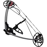 Falcon 40-65# Adjustable Triangle Compound Bow - Right & Left Hand Archery Hunting
