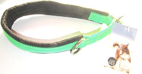 Neoprenpolster Hundehalsband Schlupfhalsband mit Zugstop (38 - 48 cm, GRÜN / SCHWARZ)