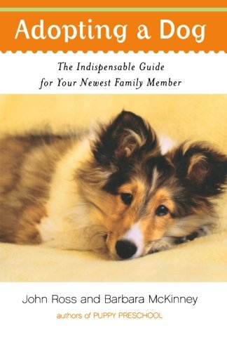 adopting-a-dog-the-indispensable-guide-for-your-newest-family-member