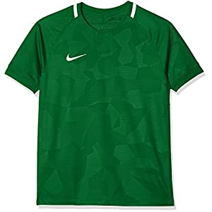 Nike Kids Dry Challenge II Short Sleeve Top - Pine Green/White/Pine Green/White, X-Large