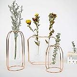 creatspaceE - Jarrón de Cristal hidropónico con Estante de Metal, jarrón de Flores Decorativo, macetas con Tubo de Oro Rosa