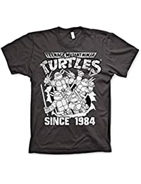 Officially Licensed Merchandise TMNT - Distressed Since 1984 T-Shirt (D.Grey)