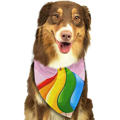 Sdltkhy Pride Love Wins Pet Bandana Washable Reversible Triangle Bibs Scarf - Kerchief for Small/Medium/Large Dogs & Cats (Hausgemachte Kostüme Für Babys)