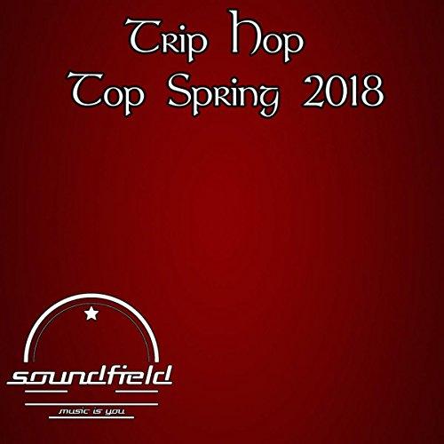 Trip Hop Top Spring 2018