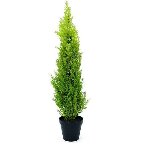 euro-palms-82606962-pianta-ornamentale-cipresso-di-leyland-90-cm-verde-grun