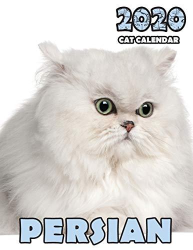 Persian 2020 Cat Calendar