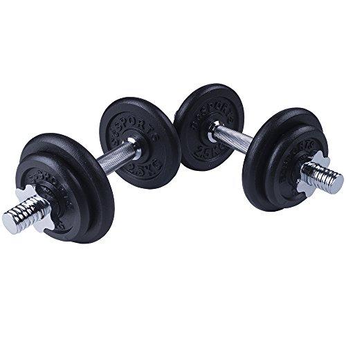 Kurzhantel-Set 20Kg Guss (2 x Kurzhantelstange 35cm, 4x1,25 und 4x2,5Kg Hantelscheiben) Hantelset Hanteln Gewichte