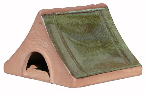 Wildlife World Ceramic Frog and Toad Home Test