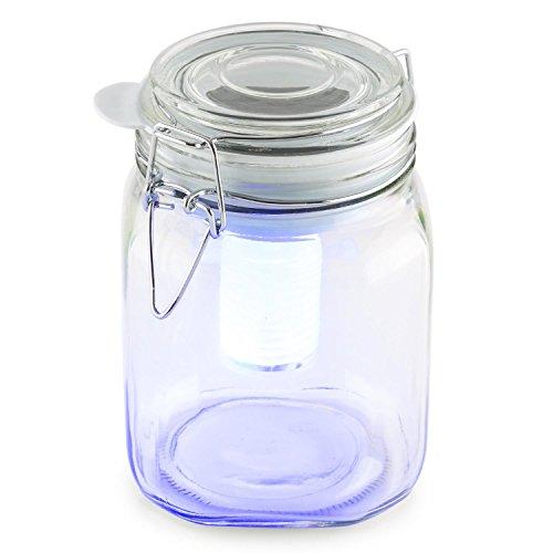 oneConcept • Wetterfrosch • Solarleuchte • Gartenleuchte • LED-Stimmungslicht • 2 Lichtfarben gelb/blau • für drinnen und draußen • Einweckglas • mit Clip • zum selber dekorieren für Wohnung, Garten oder Balkon • Solarpanel • Akku • transparent