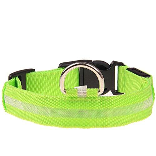 LED Hundehalsband, Hmeng Hunde Halskette Sicherheits LED Haustier Kragen Verstellbar Nylon Feste Hundehalsring Glühen Halskette mit Wasserdichtem Halsanhänger Blinklicht 5 Farbe (1.5cm*18-27cm, Grün)