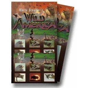 marty-stouffers-wild-america-cuddly-creatures-by-wild-america