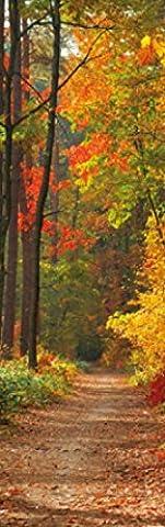 Poster De Foret - Forêts Papier Peint Photo/Poster - Coleurs D'Automne