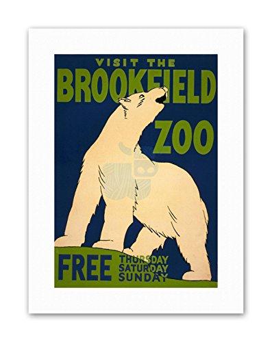 Wee Blue Coo LTD Brookfield Zoo Polar Bear USA Vintage Canvas Art Prints