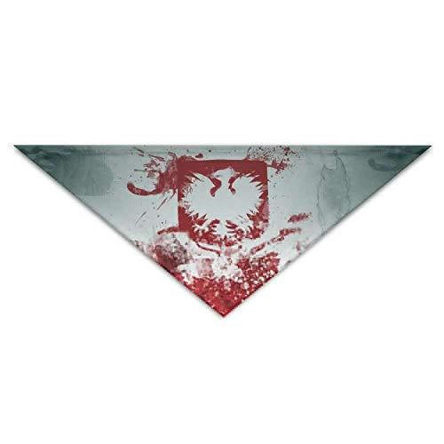 Polen Kostüm - Kunstflaggen von Polen Hund Bandanas Schals Dreieck Lätzchen Schals Stilvolle grundlegende Halstuch Katze Kragen