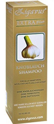 Zigavus Extra Plus Knoblauch Shampoo Original Gold 150ml gegen intensiven Haarausfall! Geruchsneutral! Anti Schuppen! Haarpflege!  (Das Für Olivenöl Ohr)