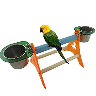 Bird Perch for Parrot Macaw African Greys Budgie Parakeet Cockatiel Cockatoo Conure Lovebird Table Training Perch Stand with Food Seed Feeder 41kVOQyauJL