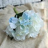 Hydrangea, Frashing Unechte Blumen Blumenrebe Künstliche Deko Blumen Gefälschte Blumen Seidenrosen Plastik Braut Trockenblumen für Haus Garten Party Simulation Blumen (F)
