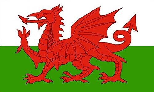 Calidad de primera 152,4 cm X cm 91,44 152,4 cm x3 ' Diseño de Dragón Galés de Gales de la bandera de