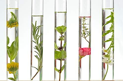 Keim-extrakt (Calendula CO2-Extrakt, 10g)