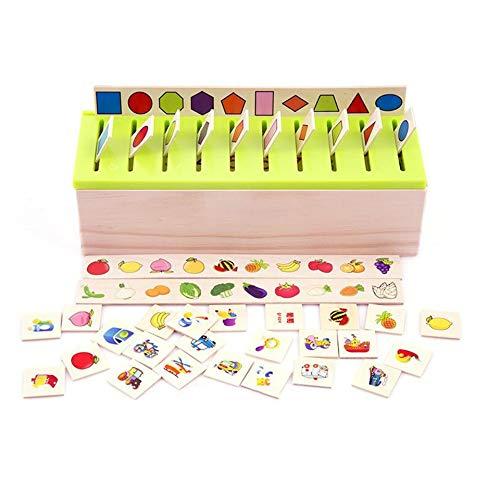 ARSUTE Montessori Caja clasificación conocimientos