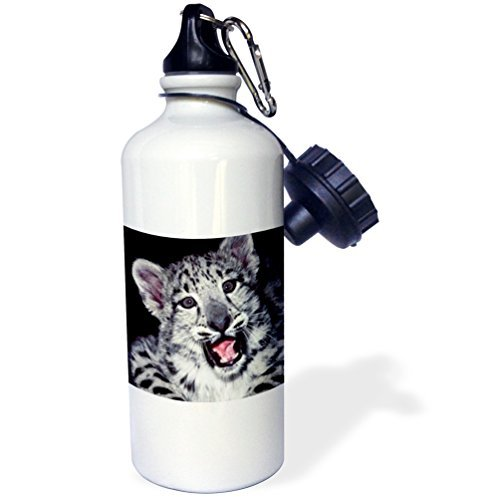 Moson Sport-Trinkflasche, Geschenk für Kinder, Mädchen, Jungen, kalifornischer Schneeleopard bei Wildlife Edelstahl-Wasserflasche für Schule, Büro, Reisen, 535 ml