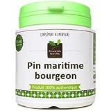 Pin maritime bourgeon1000 gélules gélatine végétale